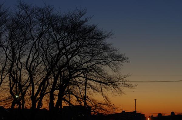 140120_ある日の夕景1.JPG