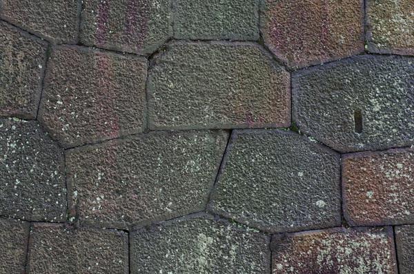 151129_金沢城石垣1.JPG