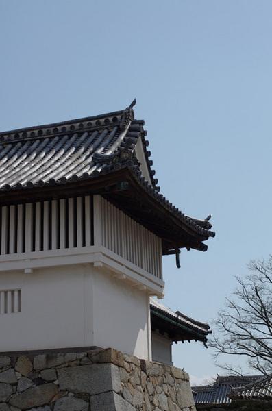 160229_佐賀城3.jpg