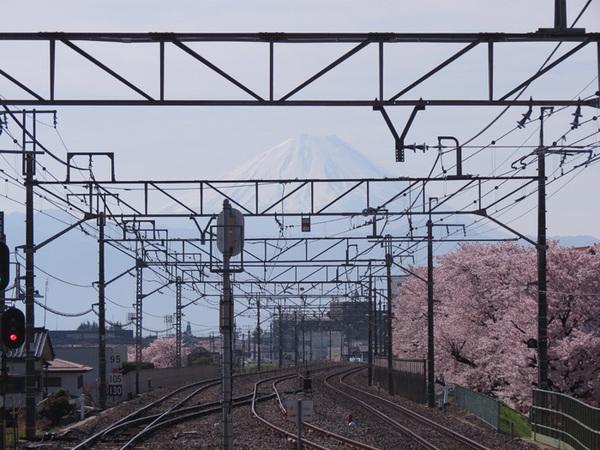 160413_線路越しの富士山.jpg