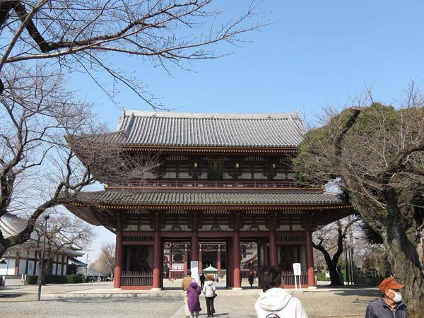 2012.3.17池上本門寺2.jpg